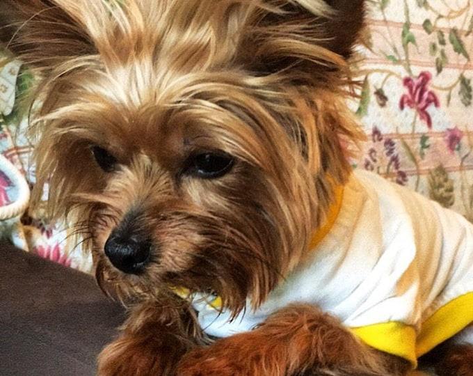 Dog Pajamas/  Dog pj's/ Personalized dog pajamas/ Pajamas for dogs/ Dog pajamas with your dog's breed