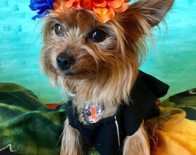 Disfraz de Frida Kahlo para perro/ Blusas Mexicanas para perro/ Blusas para perro estilo Frida/  Blusas Folkloricas mexicanas hechas a mano