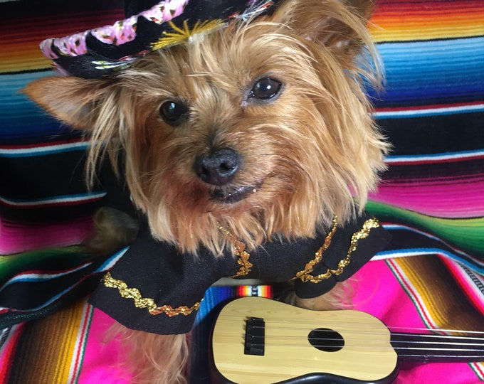 Disfraz de Mariachi para perrito VIVA MEXICO EDITION