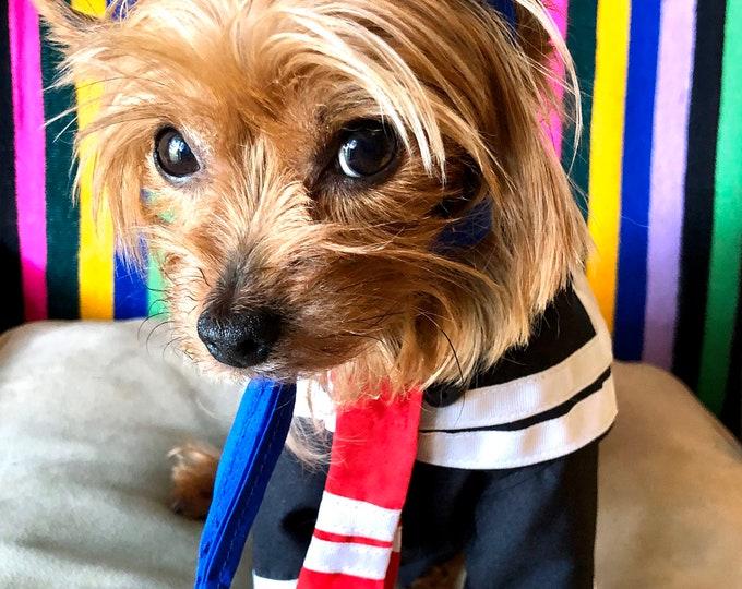 Disfraz de kiKO para perro/ Disfraz mexicano para perro/ Personaje del chavo del Ocho/ Disfraz para perro