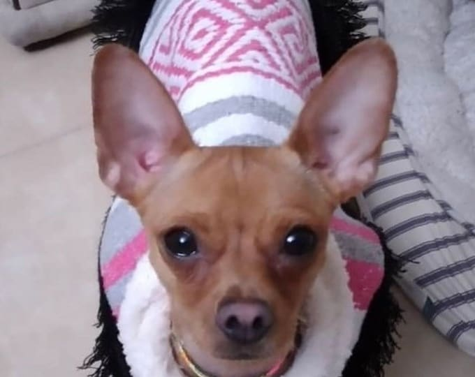 Dog zarape/ Mexican dog cape/ Mexican dog sweater/ Mexican dog Coat fleece-lined/ Dog coat