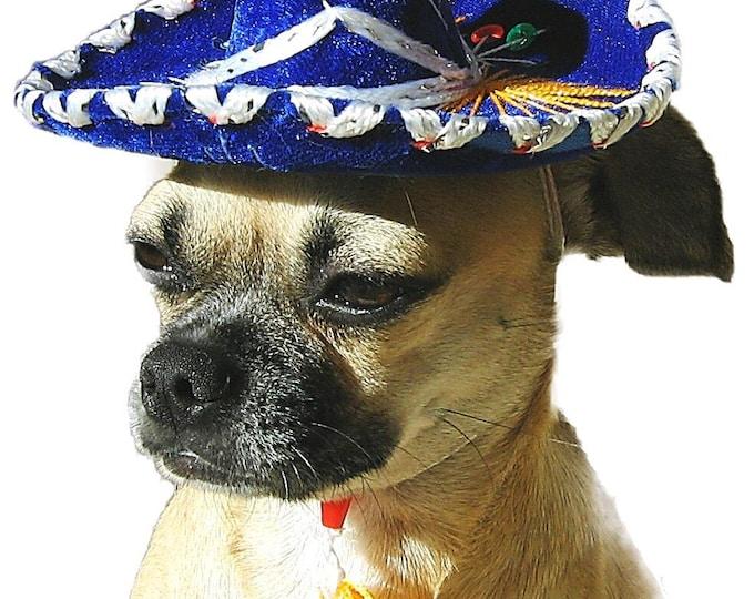 Sombreritos Mexicanos para perro