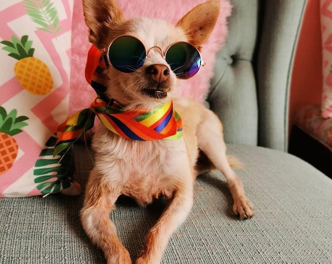 Pride bandanas for dogs and owners/ rainbow dog scarfs/ dog scarf/ rainbow scarf/ Pride dog scarf