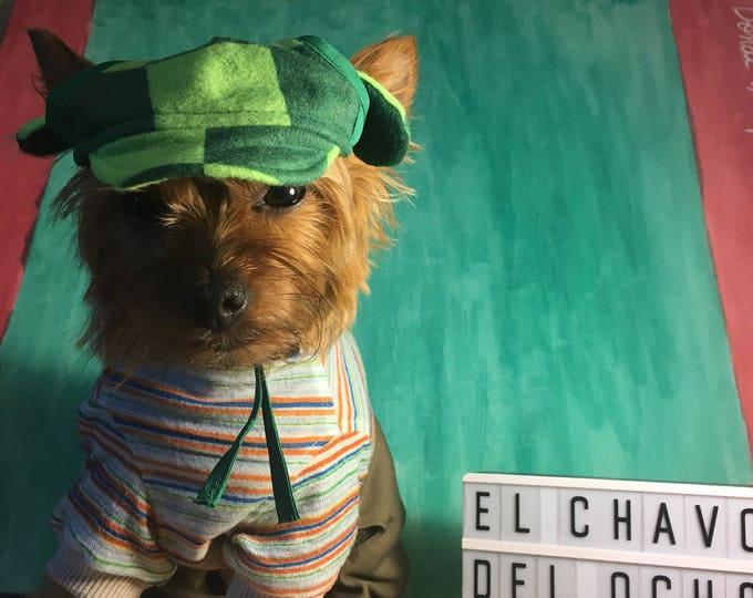 Disfraz del Chavo del Ocho para perro/ Disfraz mexicano para perro/ El chavo del Ocho/ Disfraz para perrito