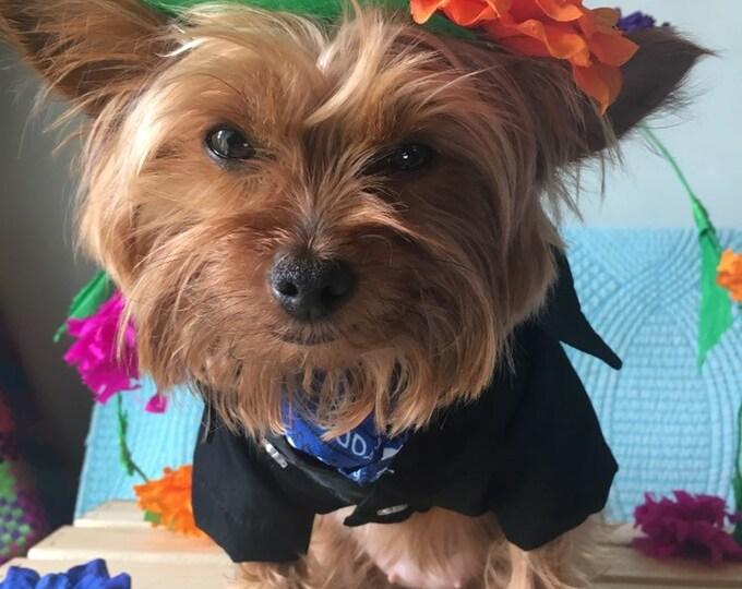 Sombreros para perro estilo Dia de muertos / Dia de Muertos/ Sombreritos Mexicanos para perro/ Accesorios para perrito