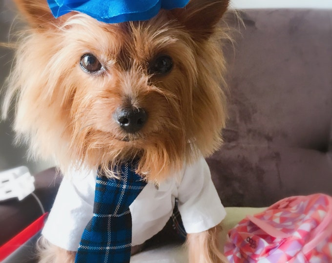 Unifomes para perrito/ Vestidos Regreso a clases para perritas/ Disfraz de uniforme para perritas/ Disfraz escolar Escozes para perro