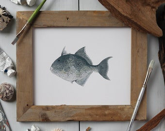 TRIGGERFISH, Fish Art Painting, Saltwater Fishing, Ocean Art, 8x10, 11x14, art print