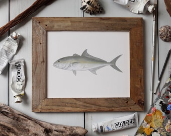 AMBERJACK, Fish Art Painting, Saltwater Fishing, Ocean Art, 8x10, 11x14, art print