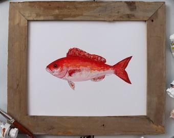 VERMILION SNAPPER, BEELINER, Fish Art Painting, Saltwater Fishing, Ocean Art, Deep Sea Fishing, art print