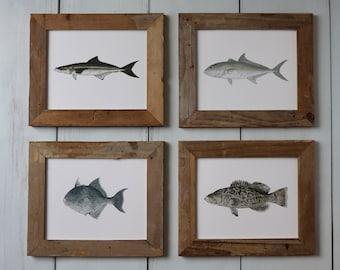 Saltwater Fish Art Prints - 4 PRINTS, Fish Painting, Ocean Art, Deep Sea Fishing, art print