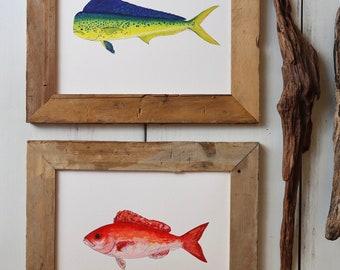 2 FISH ART PRINTS- Mahi Mahi, Vermillion Snapper   -  Fish Painting, Ocean Art, Deep Sea Fishing, art print