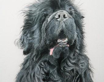 CUSTOM PET PORTRAIT. pastel drawing, dog drawing, pet art, original painting, commission art, draw my pet, animal lover gift