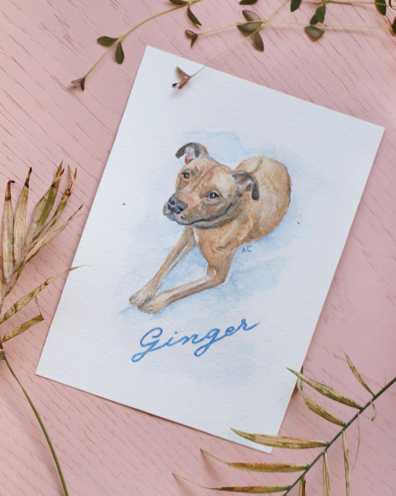 Pet portrait hand painted for cat & dog owners image 0