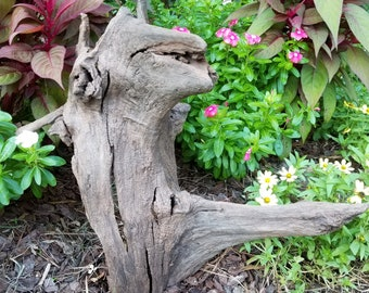 Walnut Driftwood Stump Landscape Decoration Yard Art