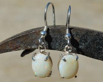 Large Silver and Opal Earrings, Australian Opals