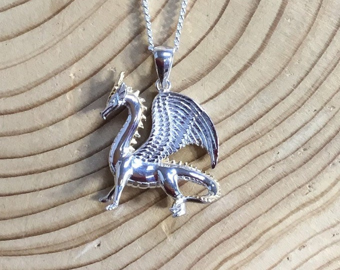 Sterling Silver Dragon Pendant and Chain