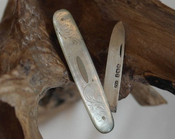 Antique Sterling Silver and Mother of Pearl Fruit Knife, Sheffield 1892