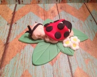 Fondant Ladybug Baby