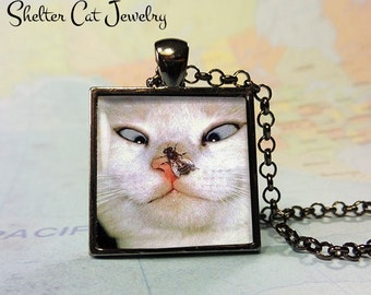 """Funny Cat and Fly Pendant - 1"""" Square Pendant Necklace or Key Ring - Handmade Wearable Shelter Cats Photo Art Jewelry"""