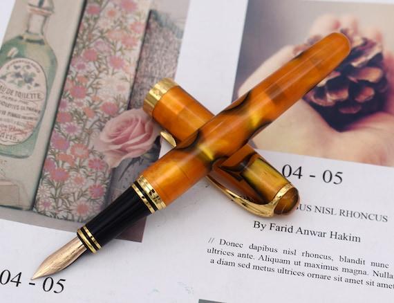 Penna stilografica in celluloide Moonman M600S con astuccio pennino fine