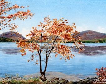 Autumn Splendor, Acadia Fall Foliage Art - Maple Tree Painting - Maine Lake House Decor - Maine Artists - Dining Room Decor