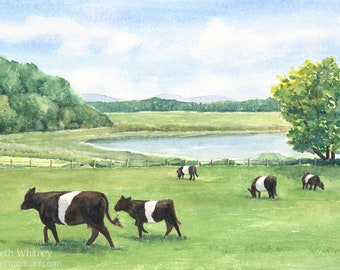Belted Galloway Cow Art Print - Follow the Leader - Watercolor Belties Painting - Aldermere Farm Pasture - Maine Landscape Decor