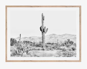 Cactus Print, Botanical Print, Cactus Decor, Printable Art, Black and White Prints, Black and White Photography, Desert, Large Wall Art