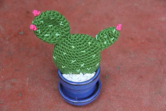 Cactus con flor grande, redondo con espinas amarillas y nopal ...   380x570