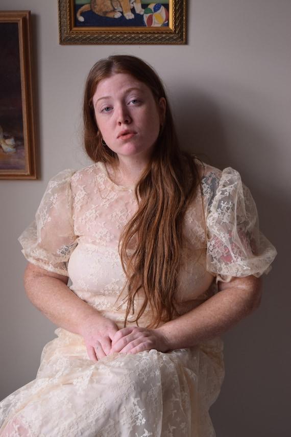 Cream Lace Bobbi Dress