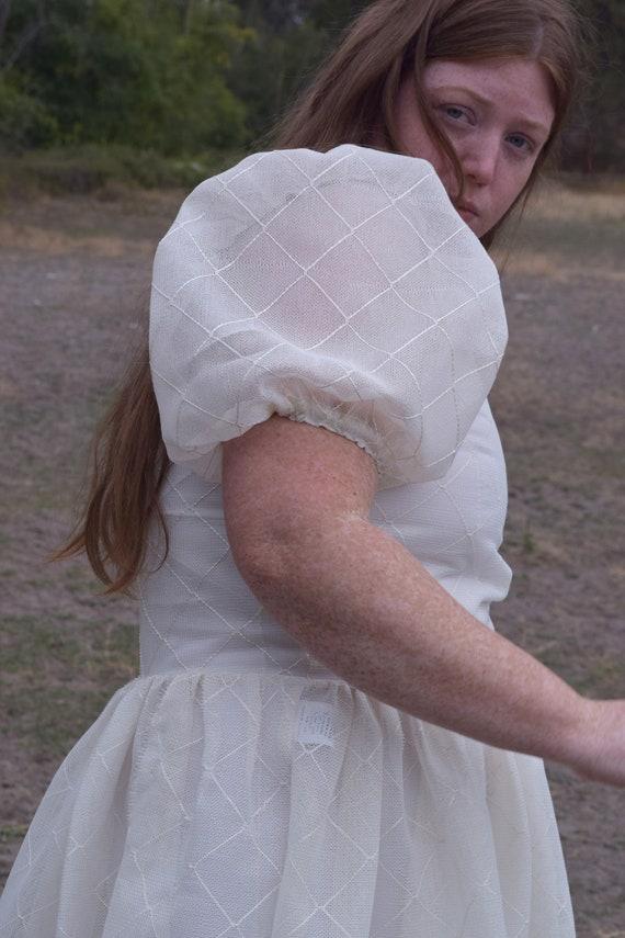 Sheer Harlequin Puff Sleeve Dress