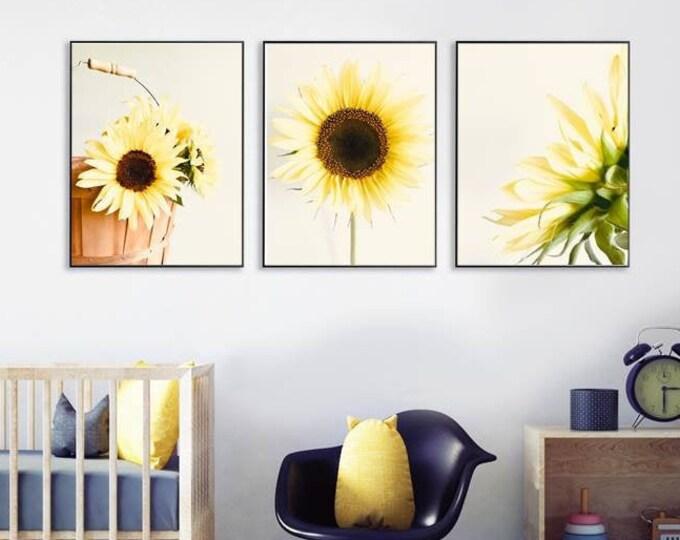 Set of 3 Sunflower Prints Yellow nature photo Ivory Brown Cream Wall Art print set Minimalist Style Flower Photos Sunflower Nursery Decor