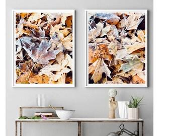 Autumn Colors Wall Decor Abstract Leaf Art Print Earth  Nature  New Age Art Print. Modern Minimalist Gallery Wall Art Large Art Print