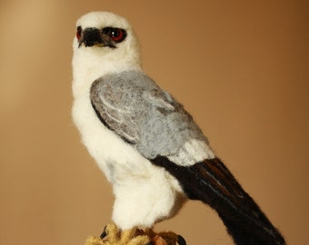 Needle felting bird of prey, Mississippi Kite life size bird sculpture, faux taxidermy, ready to ship