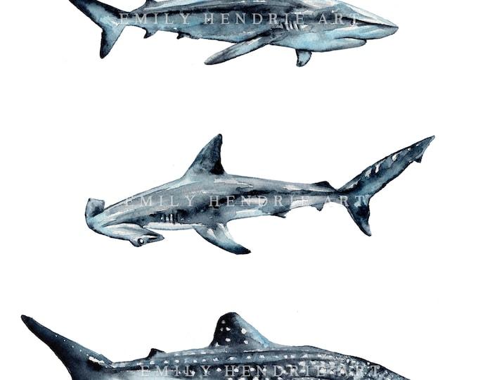Watercolor Shark Chart Print  Watercolor Sharks  Watercolor Beach Print  Shark Art  Beach Art  Great White  Whale Shark  Hammerhead