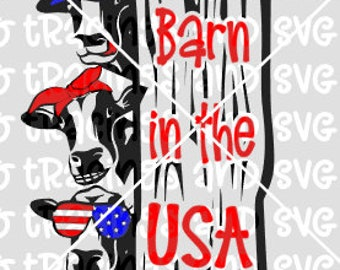Barn in usa svg cows