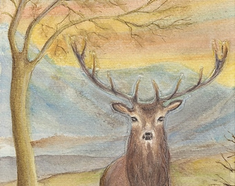 Stag Greetings Cards - A6 size, pack of 5