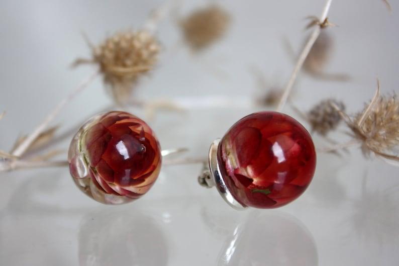 Earrings balls Dangle earrings Eco resin earrings with immortelle Red immortelle earrings Earrings with red immortelle Earrings sphere