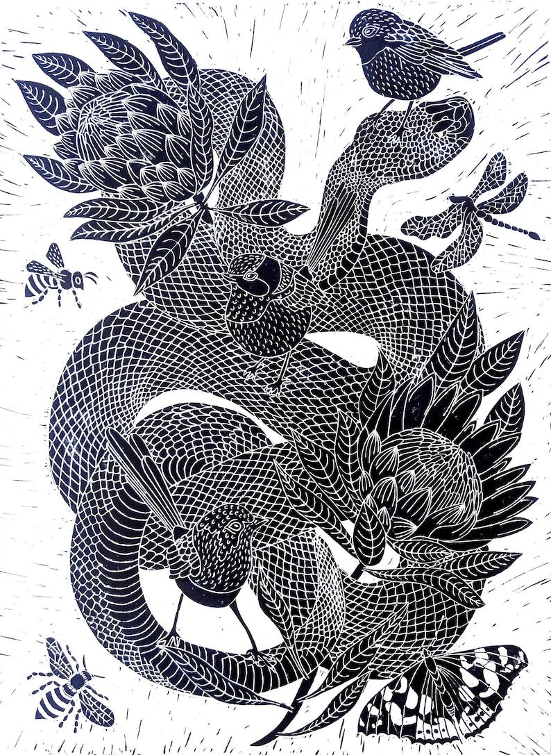 09829bc45c1 Snake with Protea's and Fairy Wrens Lino print, original art, wall art,  original artwork, botanical art