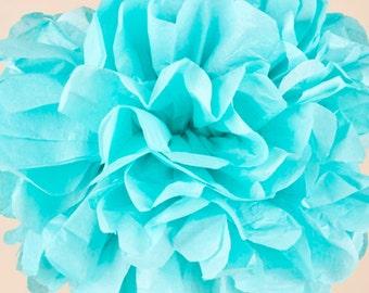 Aquamarine Paper Pom Pom