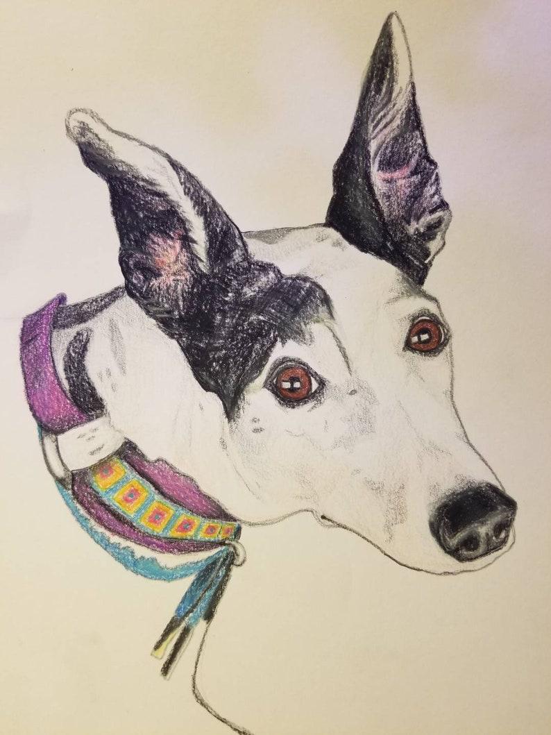 Made to Order 9 x 12 Custom Dog Portraits Original Colored Pencil Fine Art Drawings