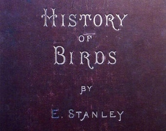 Vintage Book - History of Birds by Edward Stanley – 1892
