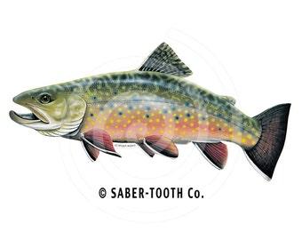 a1fa58a05ba5 Brook Trout Fish Decal Sticker