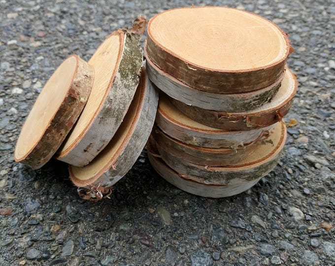 Birch Log Slices - Birch Wood Slices - Birch Craft Wood - Wood slices - Tree slices - Log Slices - Birch Slices - Set of 10 or 20