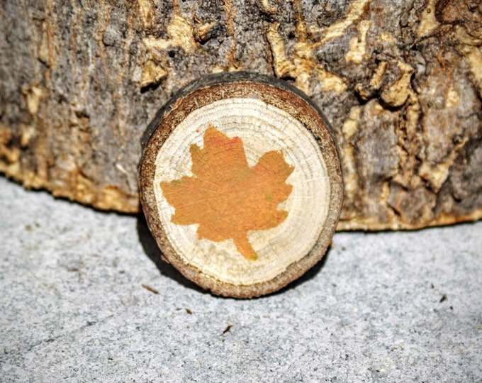 Wood Magnet - Log Slice Magnet - Leaf Stamped Magnet