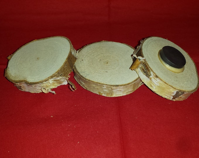 "Wood Magnets - Log Slice Natural Minnesota Birch Wood Magnet- 2"" Diameter, Set of Three"
