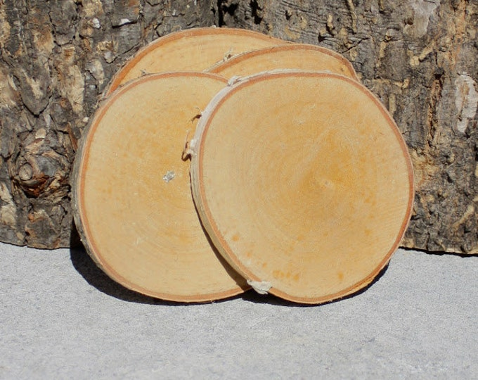 Wood Slice Coasters - Rustic Coasters - Natural Coasters - Tree Coastersnot- Set of 4 Log Slice Coasters