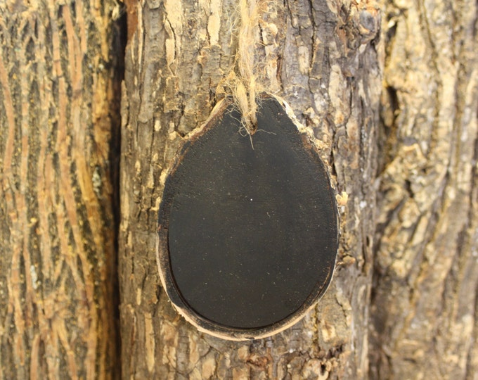 Wood Slice Chalkboard - chalkboard Paint Log Slice Ornament- BLANK