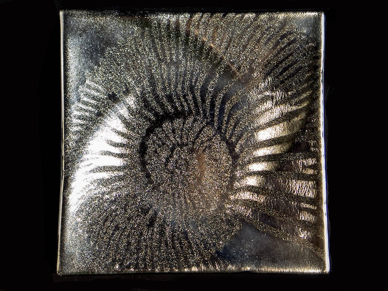 Black & Gold Iridescent Square Plate Ammonite Design by image 0