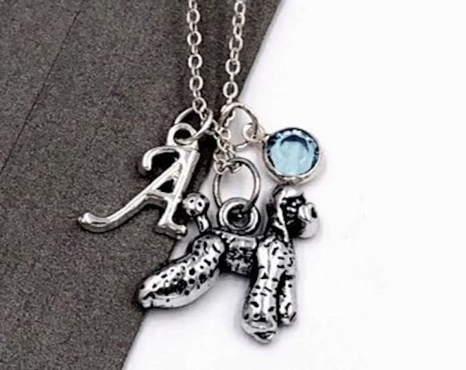 Personalized Poodle Dog Gifts, Silver Poodle Necklace Jewelry for Women and Girls, Sterling Silver Birthstone and Initial Included