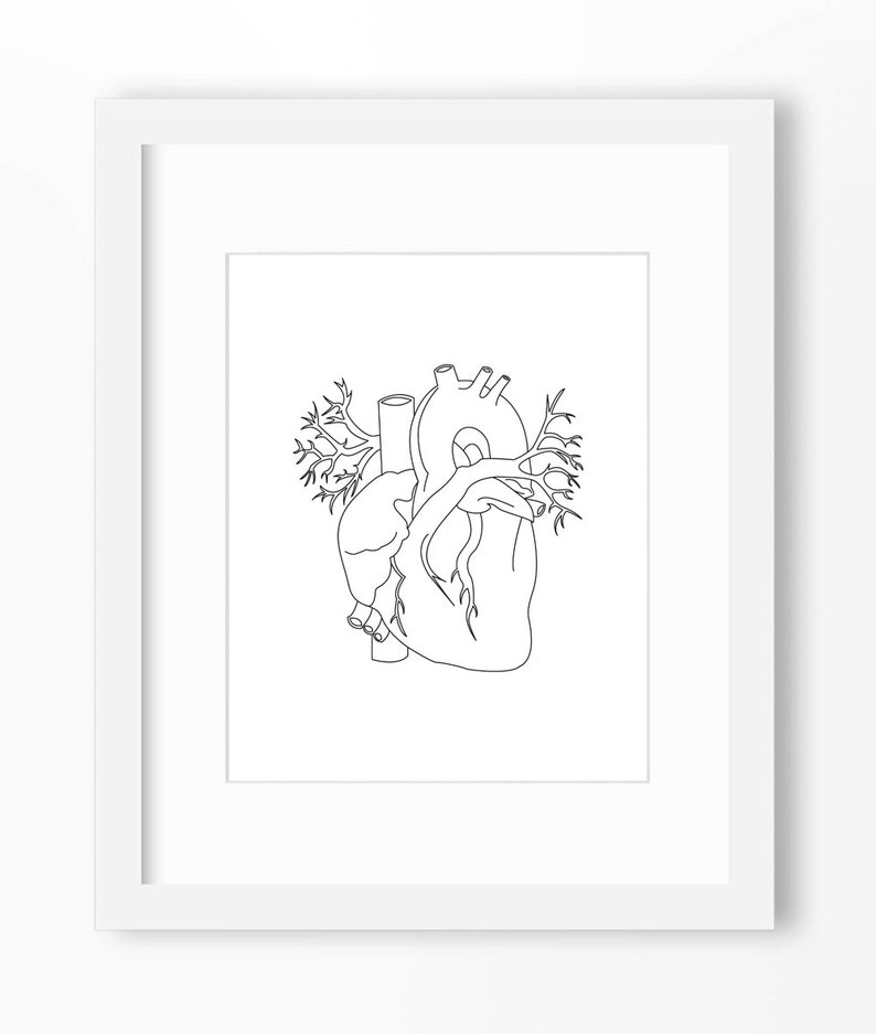 Heart Art Heart Print Anatomy Art Anatomy Print Heart